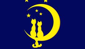 Koty na księżycu 2